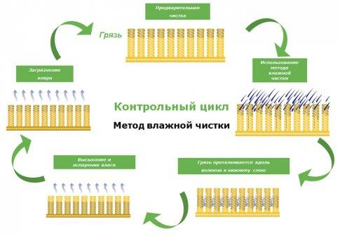 Схема профессиональной чистки ковролина