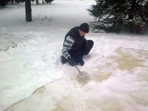 С помощью снега можно освежить старый и пыльный ковер
