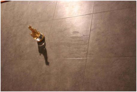 Вид 3D-ламината SHINEWOOD, Артикул F2