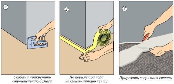 ukladka-kovrolina