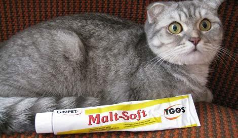 паста для выведения шерсти из желудка кошки