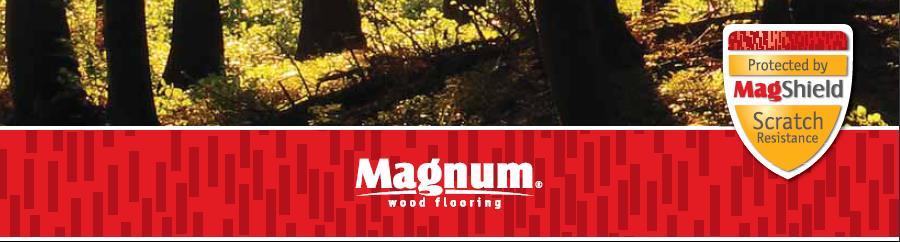 Логотип magnum