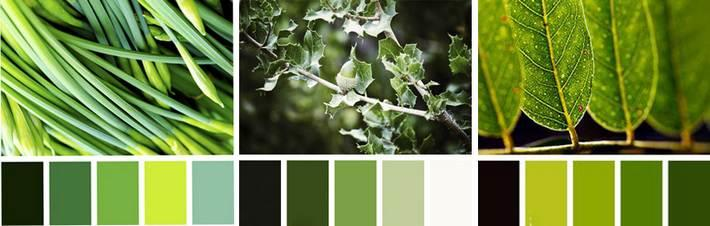 Какой цвет сочетается с зеленым