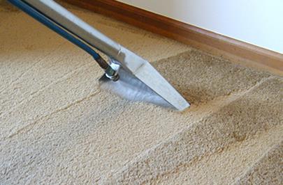Влажная уборка ковролина пылесосом