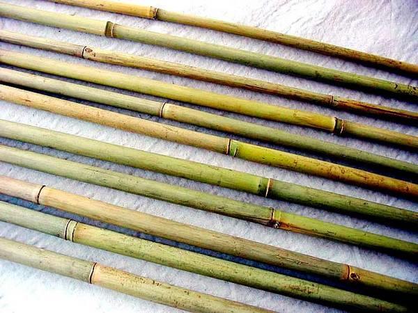 сырье из стеблей