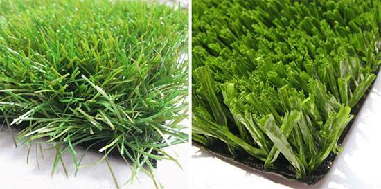 Виды и формы травинок