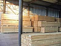 Адаптация древесины