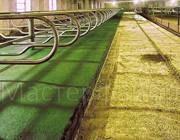 Покрытие для ферм и конюшен