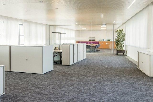 чистка ковролина в офисе